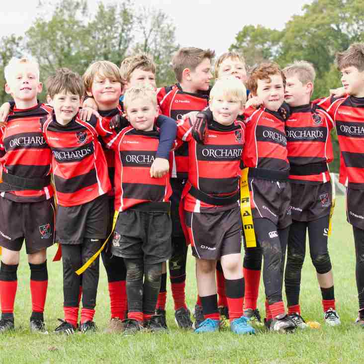Heath RFC Mini Festival a roaring success