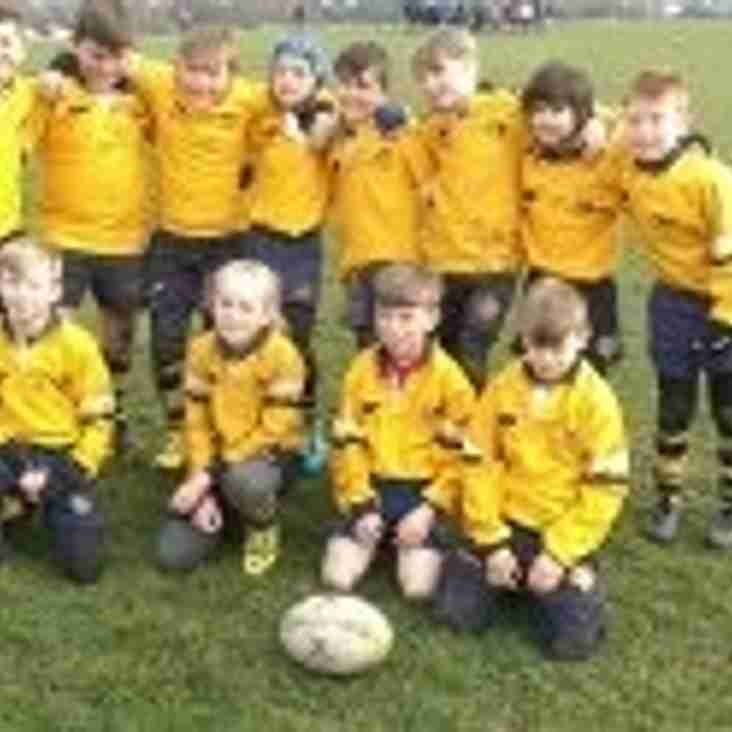 UNDER 11S (2015-16) Training starts Tuesday 4 August at 5pm til 6pm