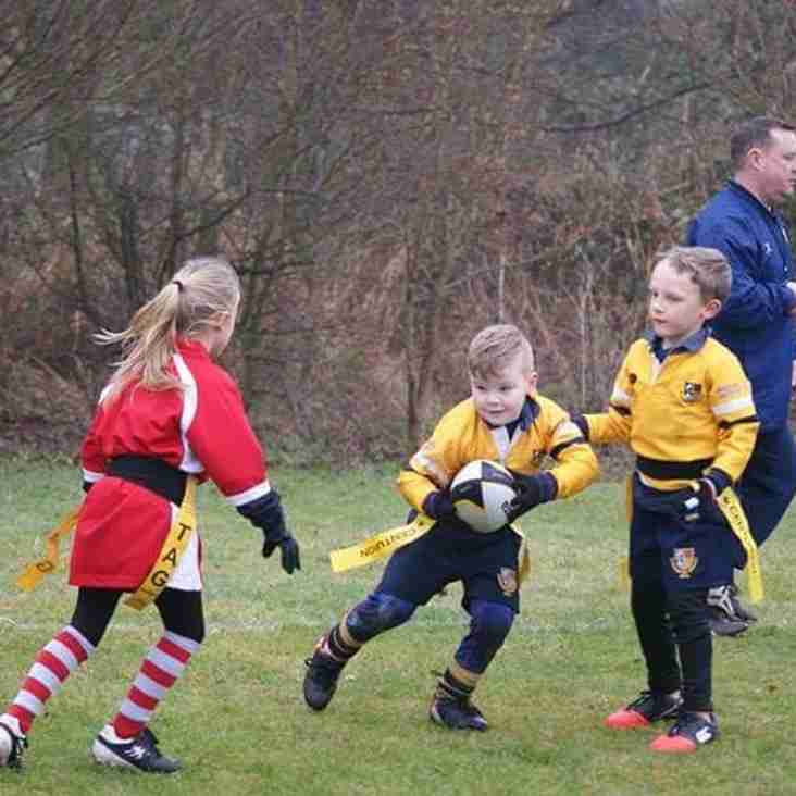 Under 7s spot the try line and charge forwards