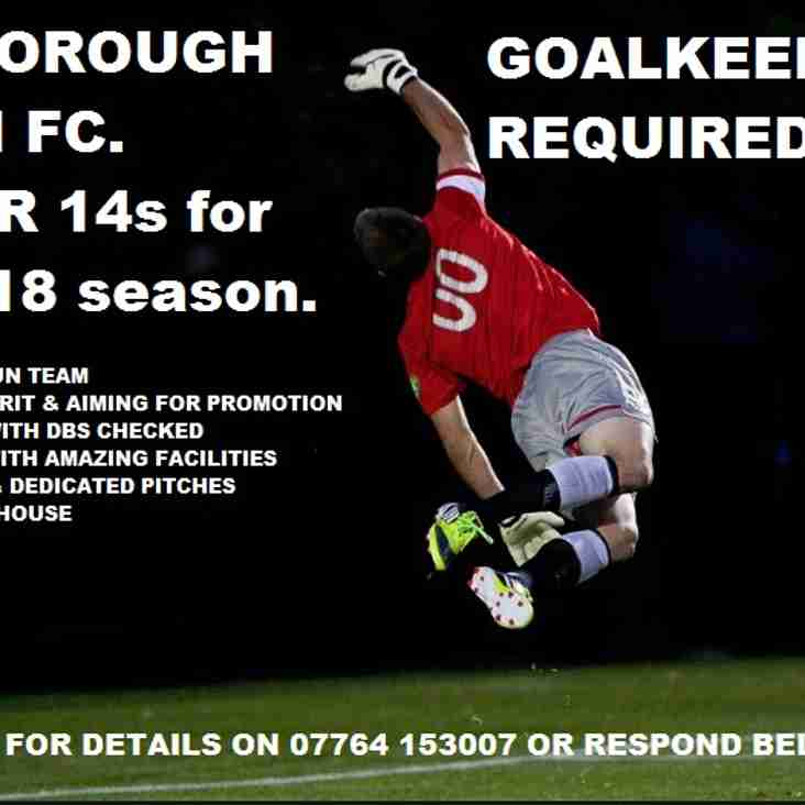 Goalkeeper required for U14s (this season U13s)