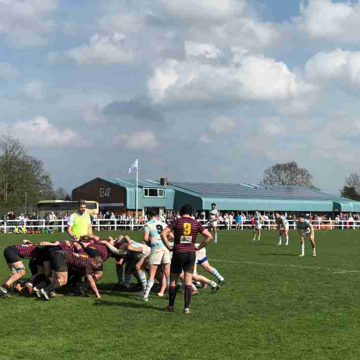 High fives all round as Warlingham gain revenge over Trojans