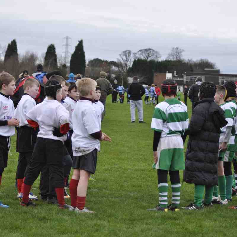 Newcastle Falcons Under 10's Festival 31st Jan 2016 Album 1