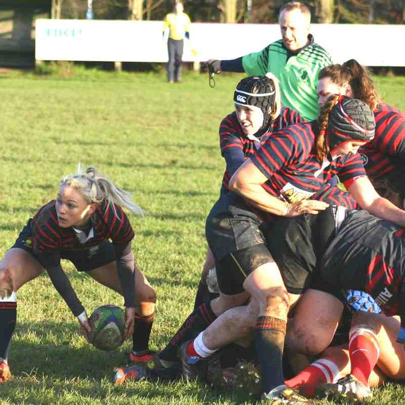Ladies 1 V Saracens II 30th November 2014