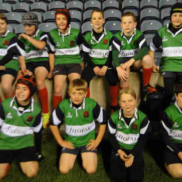 Berwick Mini Rugby Tournament