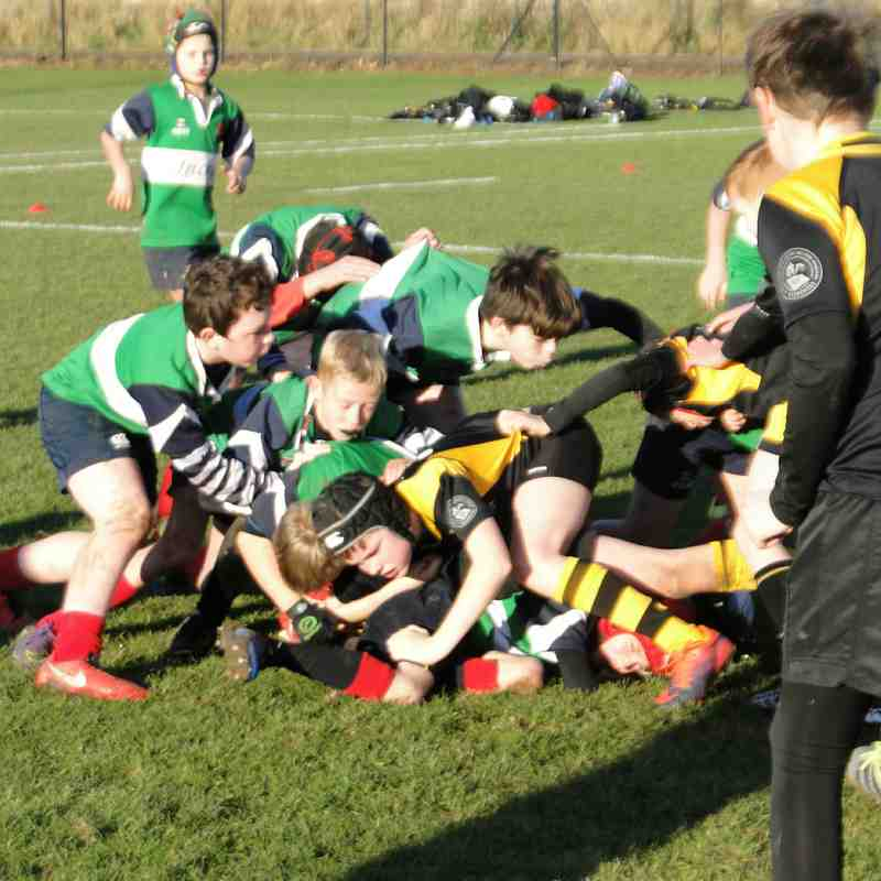 Dunbar P7 Minis against Currie- Heriot's 4-12-2016