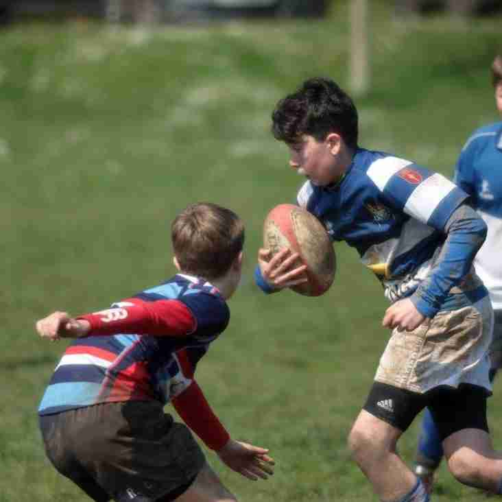 Summer Junior Touch Rugby (U12-U15s) - New Players Welcome !
