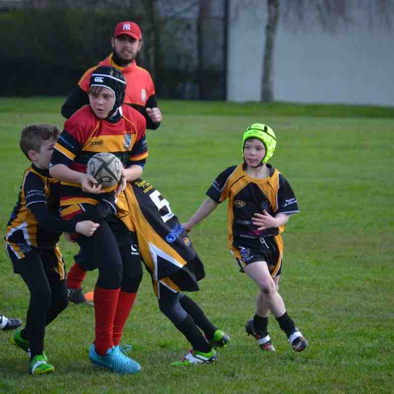 pilks under 10s v haydock