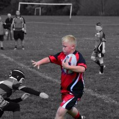 langworthy reds v pilks u 10s