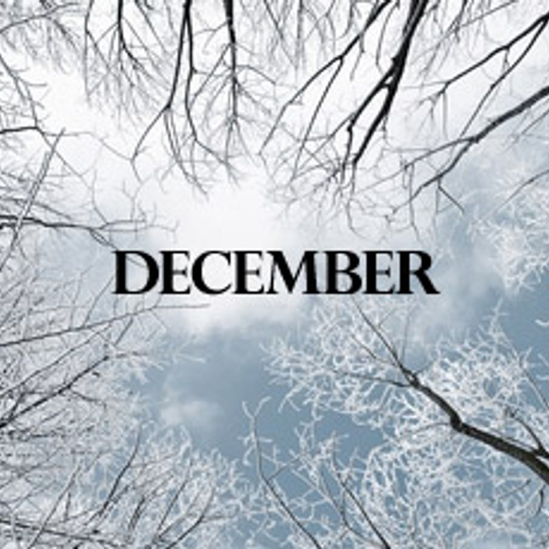 What's Happening In December