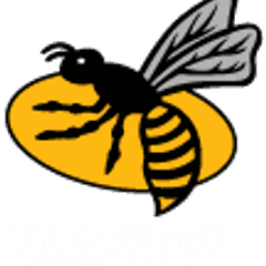 Information for SRFC Wasps Takeover day