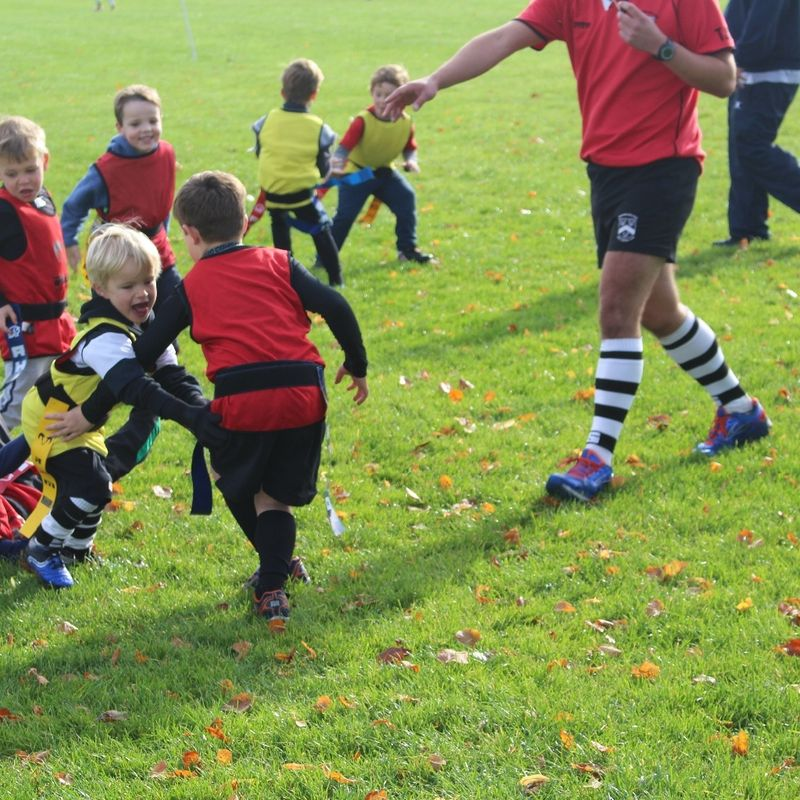 Come and play Rugby at Stratford Rugby Club !