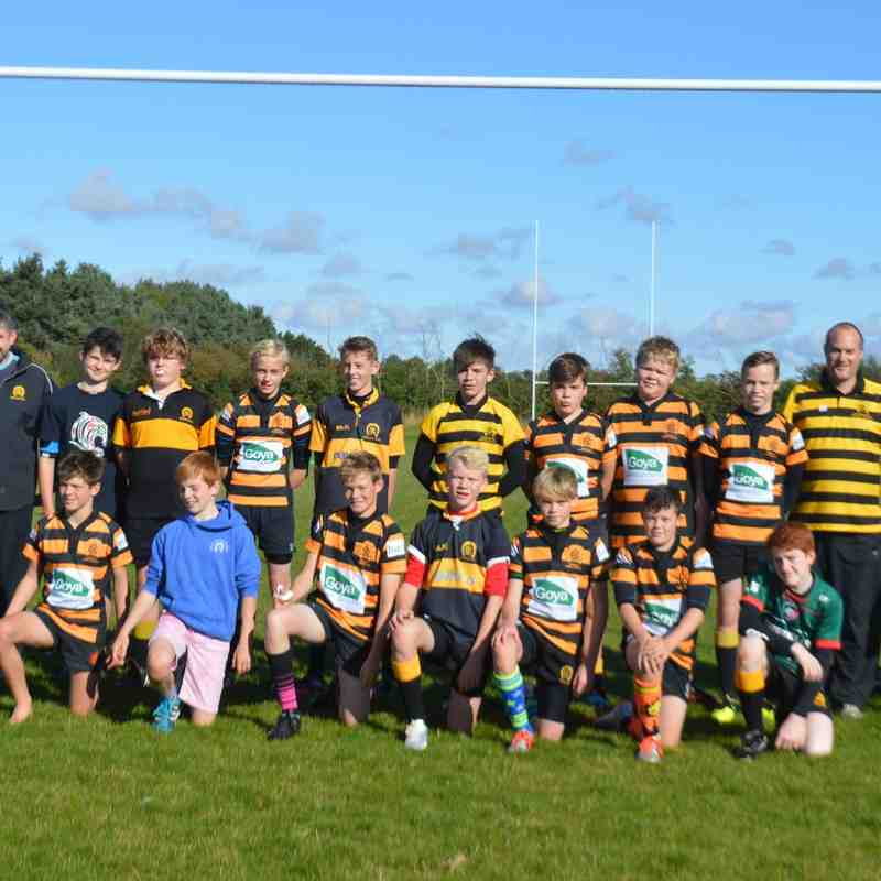 Minis and Juniors 2015/16