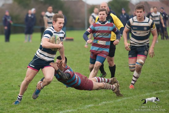 TWRFC 1sts - Hove - 6th February 2016