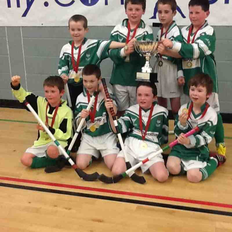 GILOUR SPORTS NATIONAL INDOOR CHAMPIONS, FORTWILLIAM MARCH 2013