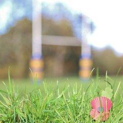 Remembrance Day, U15s OLs V Hinckley