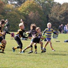 OLs Mini Rugby Tournament 2018