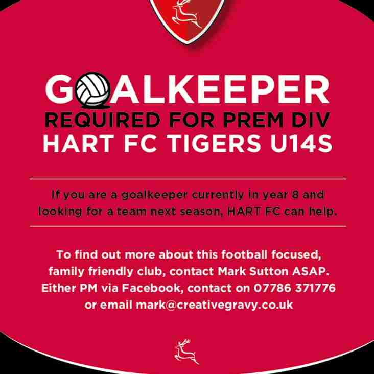 GOALKEEPER REQUIRED FOR U14s