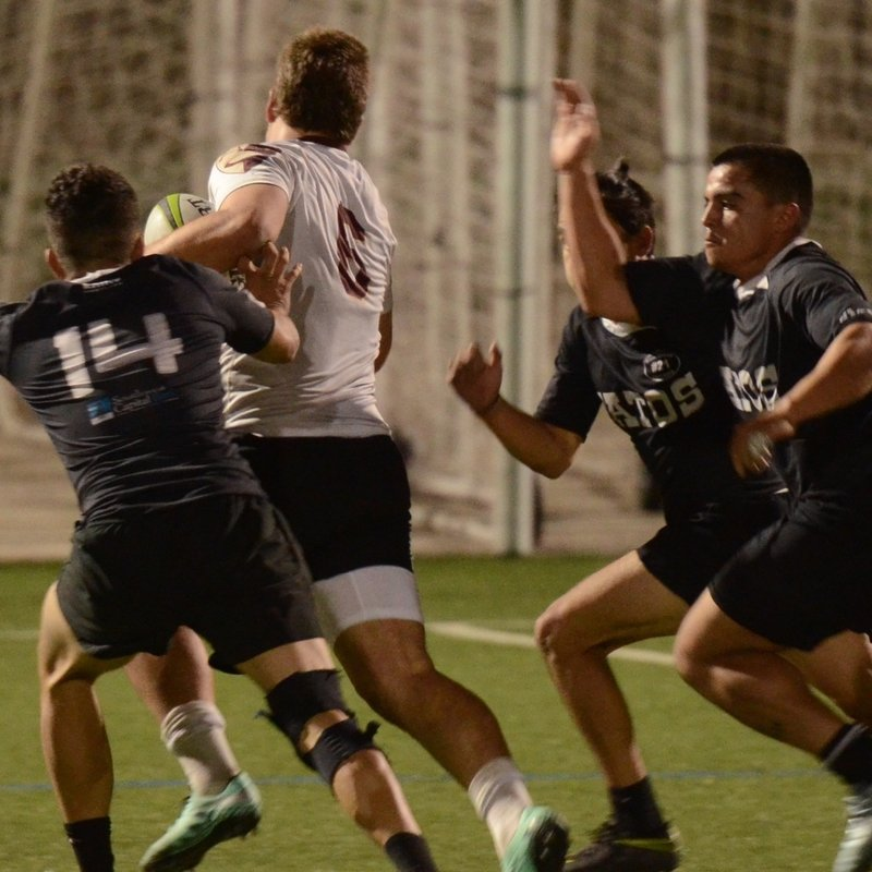 DU Rugby Ends Fall Season with Big Win on Road