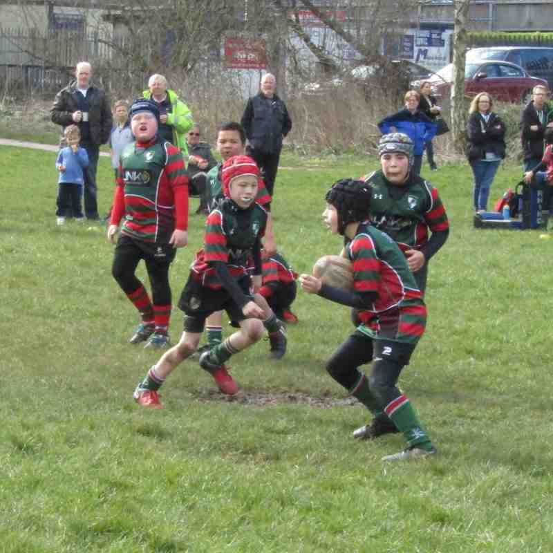 Newcastle Under Lyme v Wrexham RUFC U9's