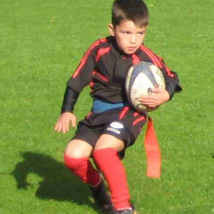 Under 6s Dazzle at Old Albanians