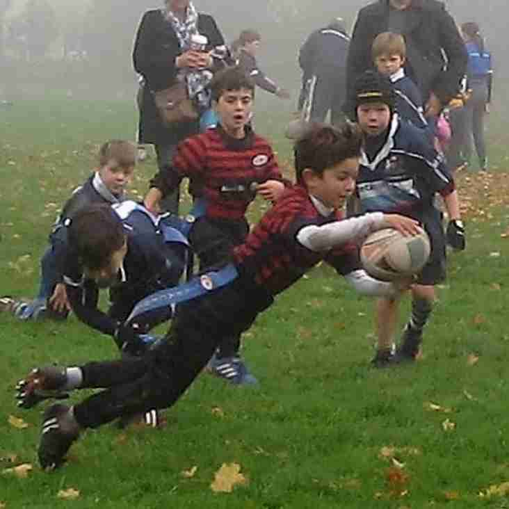 Flying Start to Season for Saracens U8s