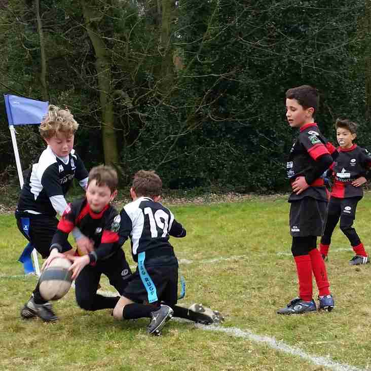 Under 8s Easter Tour 2016