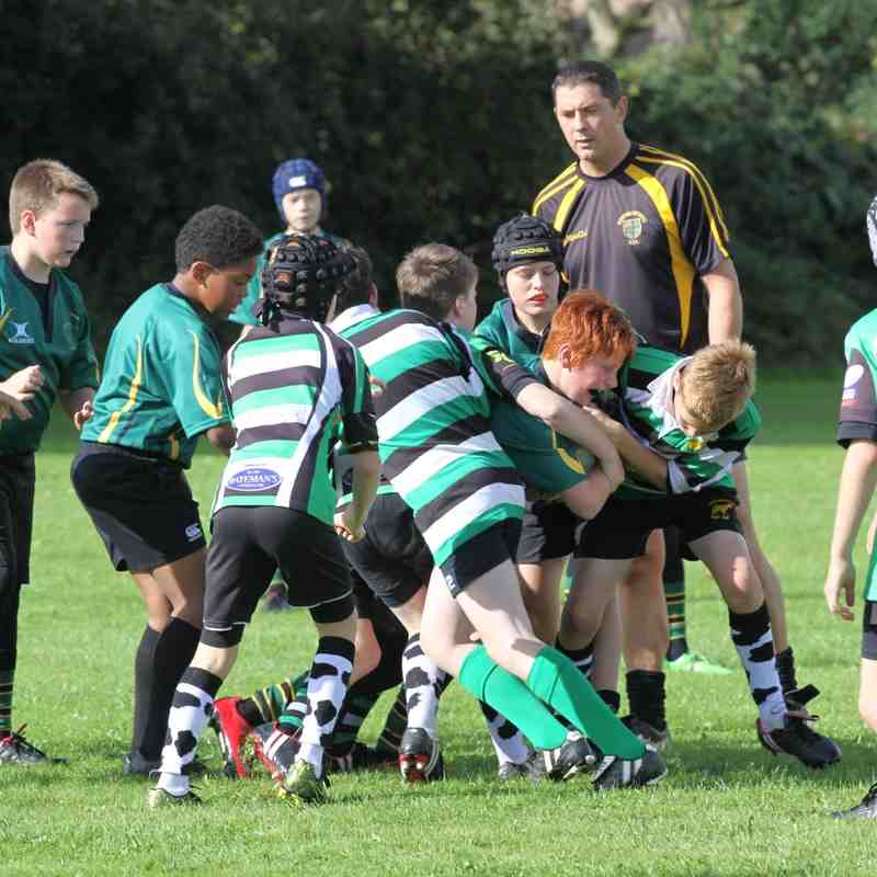 Gloucester Cup Under 12's Frampton Cotterell v Minchinhampton 25th September 2016