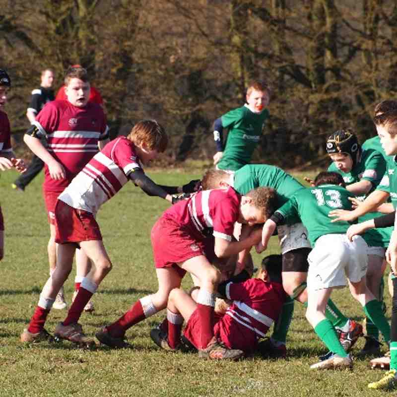 U13B v London Irish