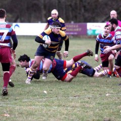 Sussex 1  Uckfield 1st XV  46  vs. Hove 2nd XV   24  Saturday 28th January 2017