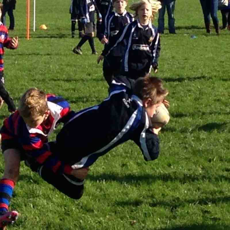 U10's BECCEHAMIAN  RFC RUGBY FESTIVAL 20/10/13