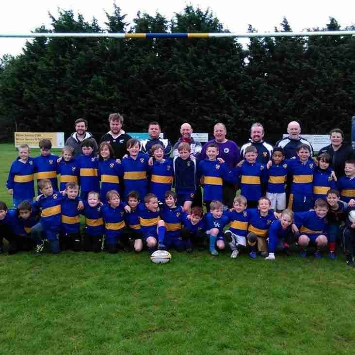 The Oakman's Cup - St Albans Minis
