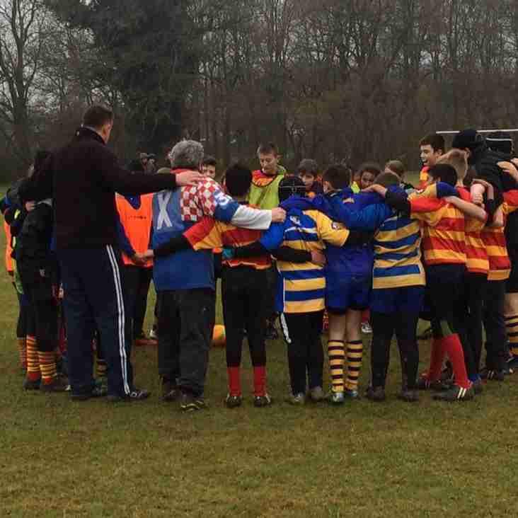 St Albans RFC Mini Rugby