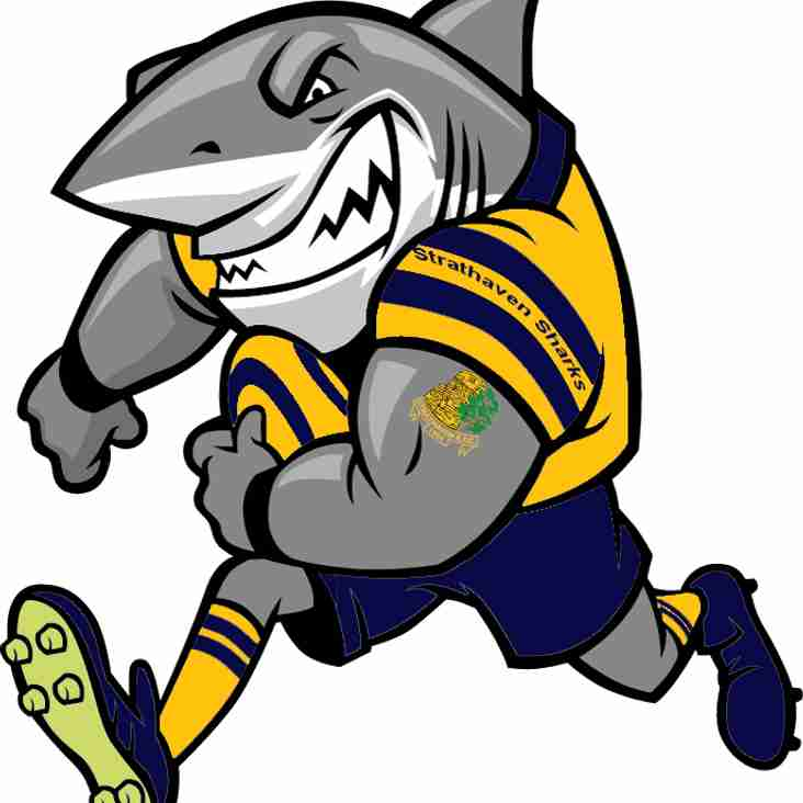 SHARK ATTACK AT STRATHAVEN RUGBY CLUB