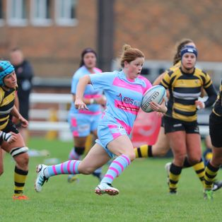 Worcester take the sting out of Wasps