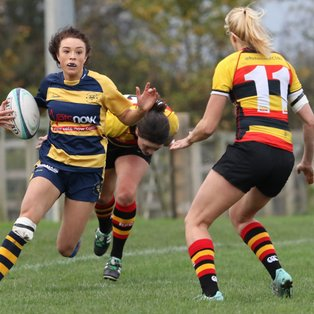 Worcester fall to league leaders in final quarter