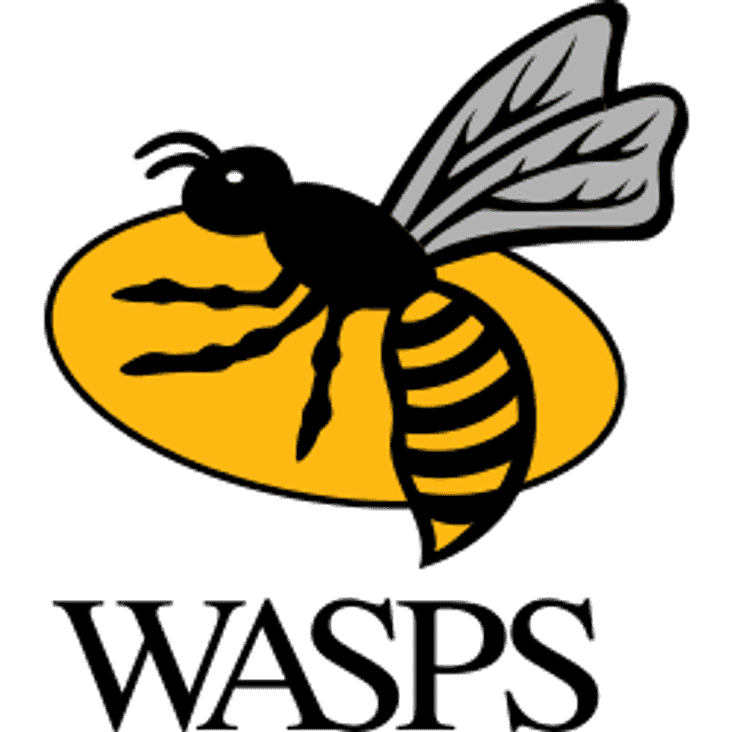 AUCTION FOR AN EXECUTIVE BOX AT WASPS