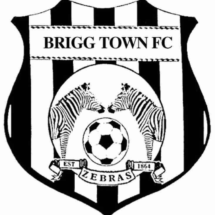 Brigg Town Manager