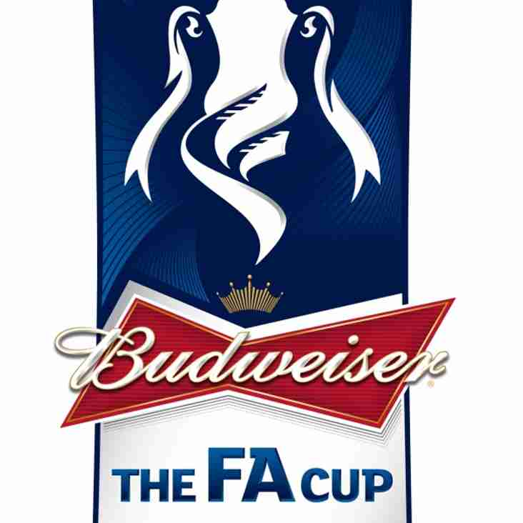 FA Cup with Budweiser