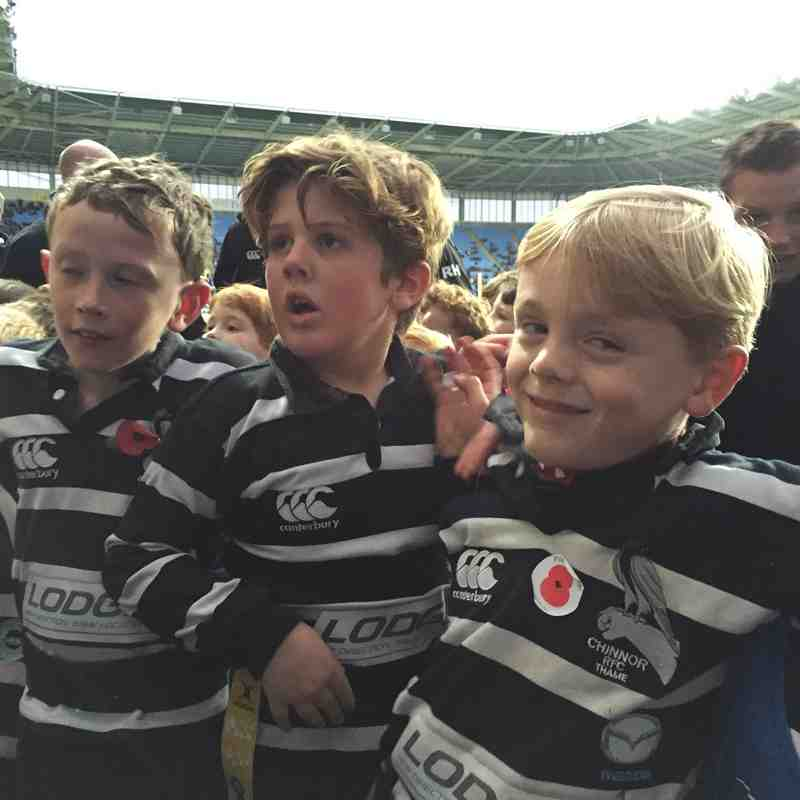 U8s at Wasps