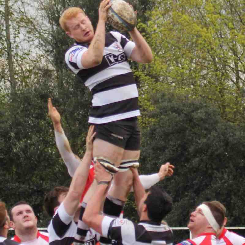 WRFC 1st XV v Bedford 16th April 2016