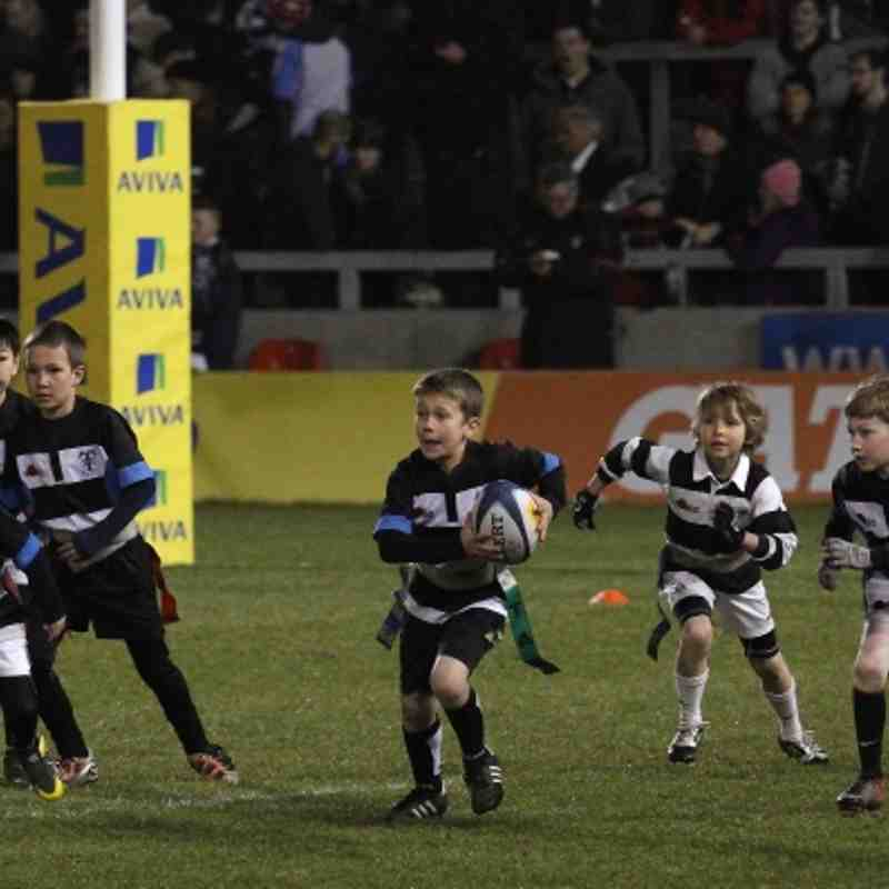TMV U8s Take over the Sharks Ground