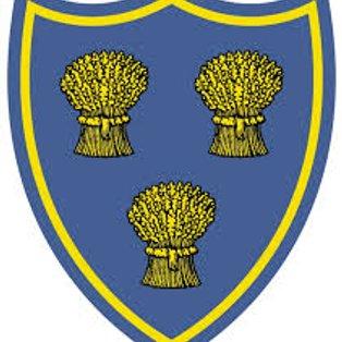 Wirral Win Cheshire Vase