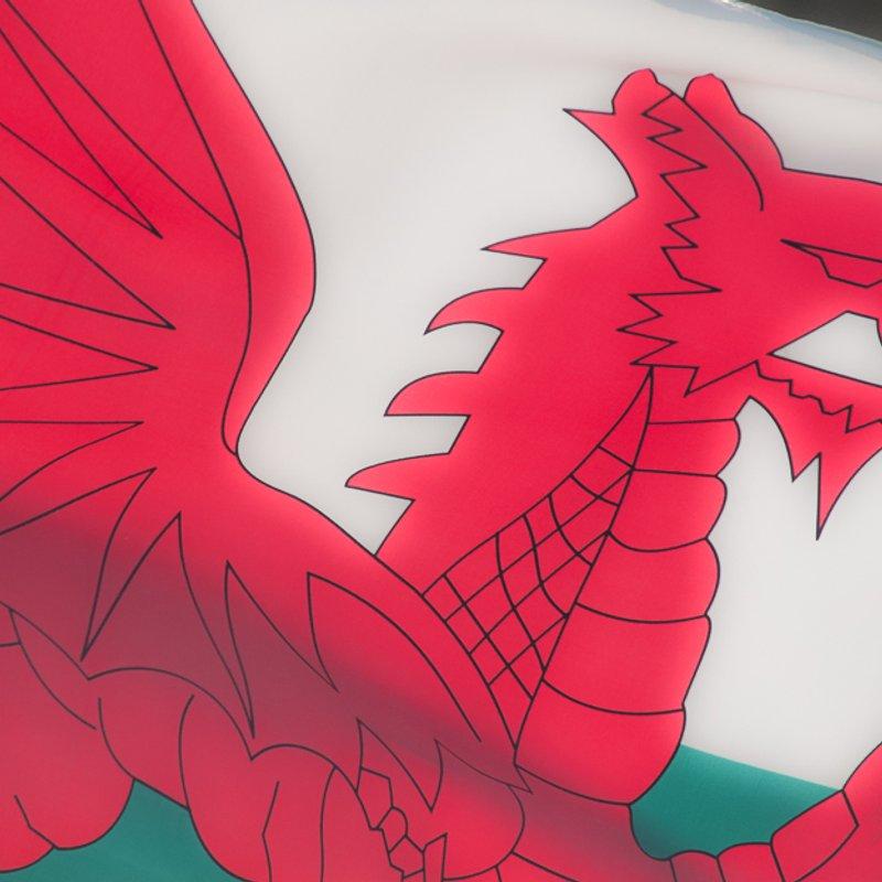 England v Wales at the MSP - Sat 1645