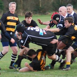 Dartfordians XV 12 Moles 17