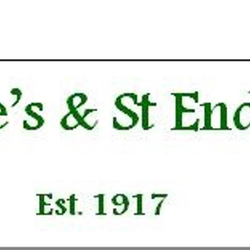 Wolfe Tone and St Enda's Registration Flyer 2016