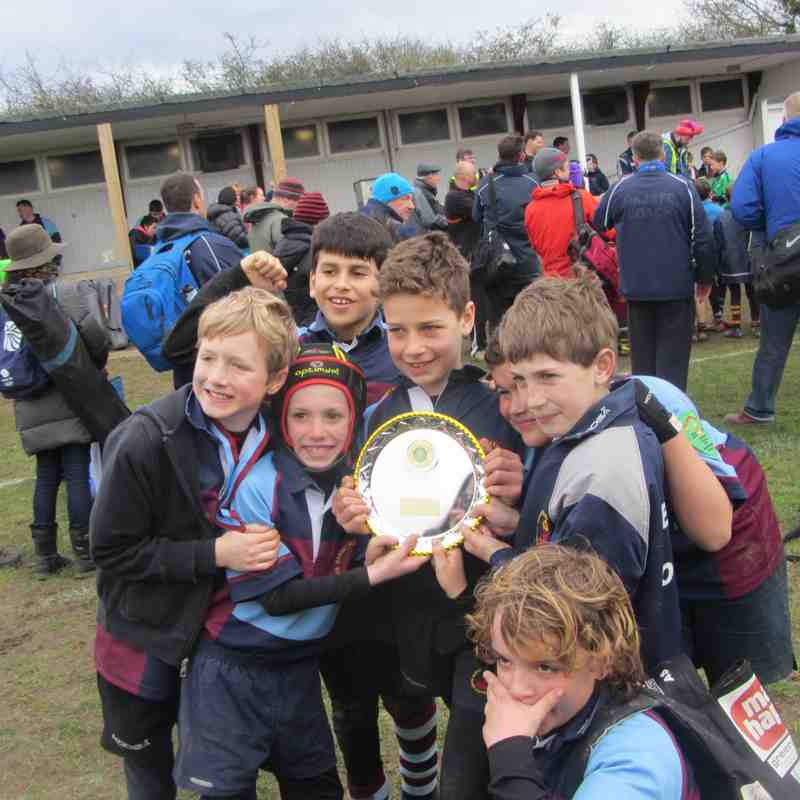 County Cup March 2015 Lions and Tigers
