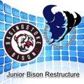 Junior Bison Restructure