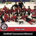 Bison Under 9s Sheffield Tournament winners