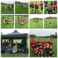 Winchester RFC vs. Home Training