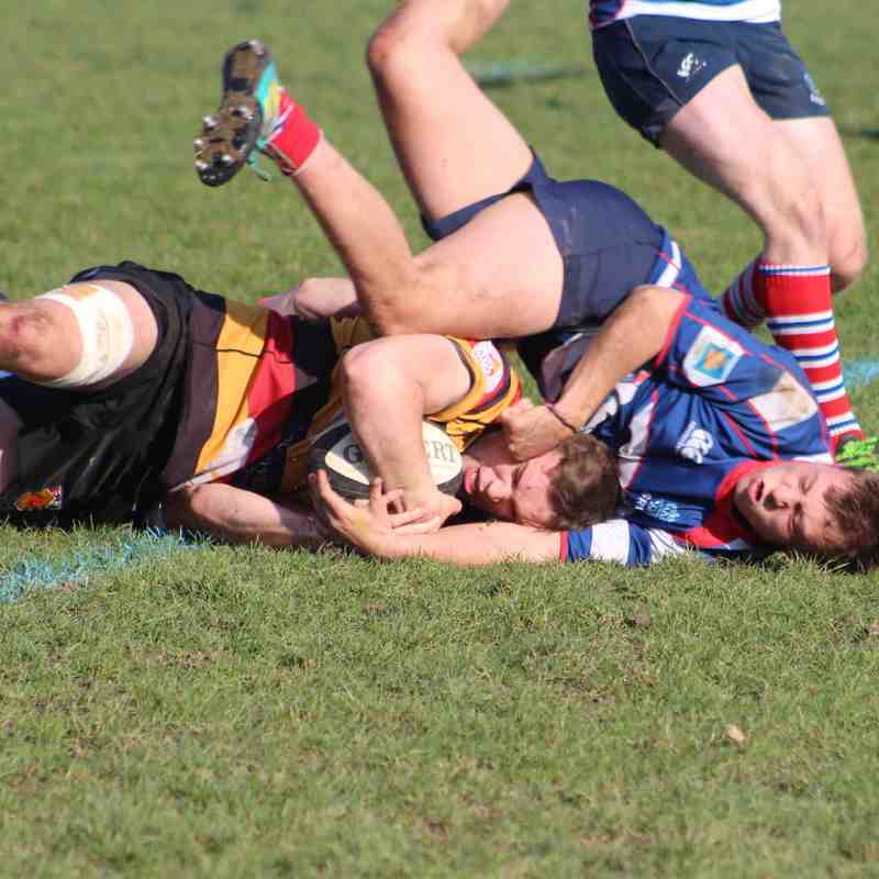 23/2/19 Harrogate Georgians 35: 8 Sheffield 2